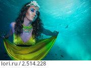 Купить «Русалка с короной из кораллов», фото № 2514228, снято 26 февраля 2011 г. (c) Сергей Новиков / Фотобанк Лори