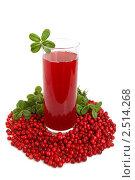 Купить «Клюквенный сок и ягоды», фото № 2514268, снято 20 августа 2009 г. (c) Наталия Евмененко / Фотобанк Лори