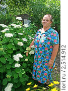 Бабушка рядом с гортензией. Стоковое фото, фотограф Васильева Татьяна / Фотобанк Лори
