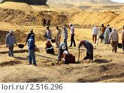 Купить «Археологические раскопки в Египте», фото № 2516296, снято 21 ноября 2010 г. (c) Михаил Коханчиков / Фотобанк Лори