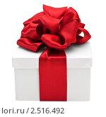 Купить «Подарок», фото № 2516492, снято 7 января 2011 г. (c) Анастасия Мелешкина / Фотобанк Лори
