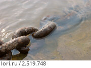 Ржавая цепь в воде. Стоковое фото, фотограф Евгений Заржицкий / Фотобанк Лори