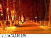 Ночная аллея (2007 год). Редакционное фото, фотограф Владимир Кузьменко / Фотобанк Лори