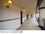 Купить «Длинный коридор», фото № 2524528, снято 11 апреля 2011 г. (c) Яков Филимонов / Фотобанк Лори