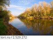 Купить «Раннее утро на лесной реке», фото № 2529272, снято 1 мая 2011 г. (c) Борис Панасюк / Фотобанк Лори