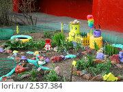 Купить «Палисадник у городского дома», эксклюзивное фото № 2537384, снято 1 мая 2011 г. (c) Щеголева Ольга / Фотобанк Лори