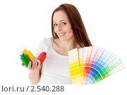 Купить «Молодая женщина с красками и палитрой на белом фоне. Дизайнер интерьера.», фото № 2540288, снято 17 мая 2011 г. (c) Мельников Дмитрий / Фотобанк Лори