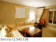 Купить «Интерьер гостиной», фото № 2543136, снято 11 сентября 2010 г. (c) Elnur / Фотобанк Лори