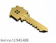 Ключ от квартиры или дома, иллюстрация № 2543428 (c) Геннадий Соловьев / Фотобанк Лори