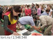Купить «Продажа арбузов на фермерском рынке», фото № 2548548, снято 18 августа 2010 г. (c) Vladimir Kolobov / Фотобанк Лори
