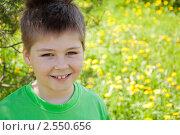 Купить «Портрет мальчика в солнечный день», фото № 2550656, снято 23 мая 2011 г. (c) Володина Ольга / Фотобанк Лори