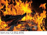 Купить «Горящие дрова в камине», эксклюзивное фото № 2552816, снято 14 мая 2011 г. (c) Юрий Морозов / Фотобанк Лори