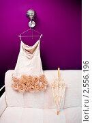 Купить «Платье невесты и зонтик», фото № 2556196, снято 8 мая 2009 г. (c) Фадеева Марина / Фотобанк Лори