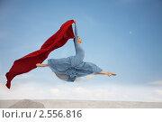 Купить «Балерина», фото № 2556816, снято 16 августа 2018 г. (c) Darja Vorontsova / Фотобанк Лори