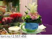 Купить «Цветочная композиция», фото № 2557456, снято 16 июля 2018 г. (c) Светлана Чуйкова / Фотобанк Лори