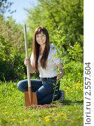 Купить «Молодая женщина сажает дерево», фото № 2557604, снято 25 мая 2011 г. (c) Яков Филимонов / Фотобанк Лори