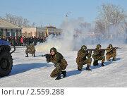 Купить «Спецназовцы МВД», эксклюзивное фото № 2559288, снято 18 марта 2011 г. (c) Free Wind / Фотобанк Лори