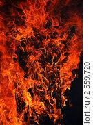 Купить «Пламя на черном фоне», фото № 2559720, снято 9 июня 2010 г. (c) Евгений Солдатов / Фотобанк Лори
