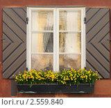 Купить «Окно», фото № 2559840, снято 3 мая 2011 г. (c) Сергей Разживин / Фотобанк Лори