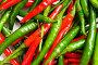 Красный и зеленый перец чили, фото № 2561056, снято 11 января 2009 г. (c) Elnur / Фотобанк Лори
