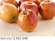Яблоки на деревянной доске. Стоковое фото, фотограф Мамышева Наталья Васильевна / Фотобанк Лори