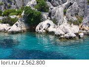 Берег моря. Стоковое фото, фотограф Камиля Сайдашева / Фотобанк Лори