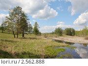 Купить «Весенний пейзаж с отражением», фото № 2562888, снято 22 мая 2011 г. (c) Виталий Горелов / Фотобанк Лори