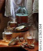 Купить «Пиво с рыбой в бане», фото № 2563564, снято 14 декабря 2019 г. (c) Марина Володько / Фотобанк Лори