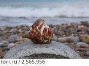 Камень на фоне моря. Стоковое фото, фотограф Камиля Сайдашева / Фотобанк Лори