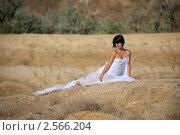 Девушка в полупрозрачной ткани на сухой земле. Стоковое фото, фотограф Ivan Prokopenko / Фотобанк Лори