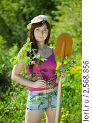 Купить «Дачница с саженцем», фото № 2568856, снято 25 мая 2011 г. (c) Яков Филимонов / Фотобанк Лори