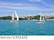 Купить «Крейсерские яхты под парусами на фоне побережья курорта Сочи», фото № 2572612, снято 28 мая 2011 г. (c) Анна Мартынова / Фотобанк Лори