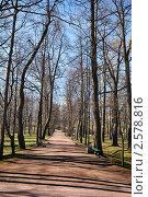 Парк (2011 год). Редакционное фото, фотограф Дмитрий Моисеевских / Фотобанк Лори