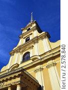 Петропавловский собор (2011 год). Стоковое фото, фотограф Дмитрий Моисеевских / Фотобанк Лори