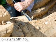 Купить «Скульптор создает скульптуру из дерева», фото № 2581160, снято 3 июня 2011 г. (c) Наталья Гарячая / Фотобанк Лори