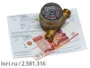 Купить «Оплата счетов за горячую воду», фото № 2581316, снято 16 августа 2018 г. (c) Геннадий Соловьев / Фотобанк Лори