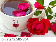 Купить «Розовый чай», фото № 2585764, снято 8 июня 2011 г. (c) Peredniankina / Фотобанк Лори
