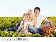 Купить «Счастливая семья с ребенком на пикнике в поле», фото № 2588996, снято 19 мая 2011 г. (c) Raev Denis / Фотобанк Лори