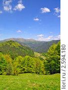 Купить «Лето на горном склоне», фото № 2594180, снято 26 мая 2011 г. (c) Швадчак Василий / Фотобанк Лори