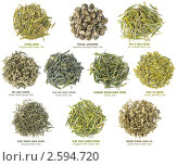 Купить «Коллекция китайского зеленого чая», фото № 2594720, снято 17 мая 2011 г. (c) Анна Кучерова / Фотобанк Лори