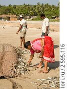 Купить «Покупка рыбы на пляже», фото № 2595116, снято 18 декабря 2009 г. (c) Katerina Anpilogova / Фотобанк Лори