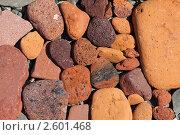 Купить «Фон. Красно-коричневые камешки», фото № 2601468, снято 12 июня 2011 г. (c) А. А. Пирагис / Фотобанк Лори