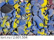 Купить «Мозаика из цветных камней (фон)», фото № 2601504, снято 12 июня 2011 г. (c) А. А. Пирагис / Фотобанк Лори