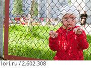 Купить «Маленькая девочка за забором детского сада», фото № 2602308, снято 17 июня 2011 г. (c) Марина Славина / Фотобанк Лори