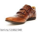 Купить «Мужской ботинок на белом фоне», фото № 2602540, снято 19 июня 2010 г. (c) Elnur / Фотобанк Лори