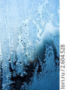 Купить «Зимняя фантазия, морозный узор на стекле», фото № 2604528, снято 6 декабря 2009 г. (c) ElenArt / Фотобанк Лори