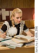 Купить «Старшеклассница с книгами за партой», фото № 2606396, снято 16 мая 2011 г. (c) Дмитрий Черевко / Фотобанк Лори