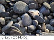 Камни. Стоковое фото, фотограф Дмитрий Петров / Фотобанк Лори