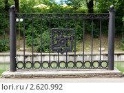 Решетка в парке (2011 год). Стоковое фото, фотограф Андрей Дмитриев / Фотобанк Лори