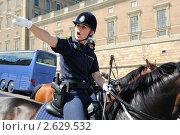 Шведская полиция (2011 год). Редакционное фото, фотограф Сергей Разживин / Фотобанк Лори